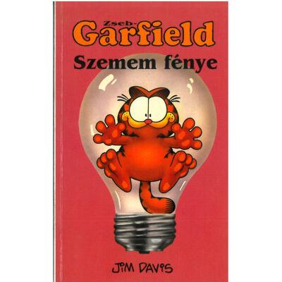 Zseb-Garfield 10. sz.