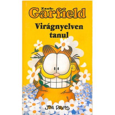 Zseb-Garfield 17. sz.