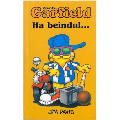Zseb-Garfield 3. sz.