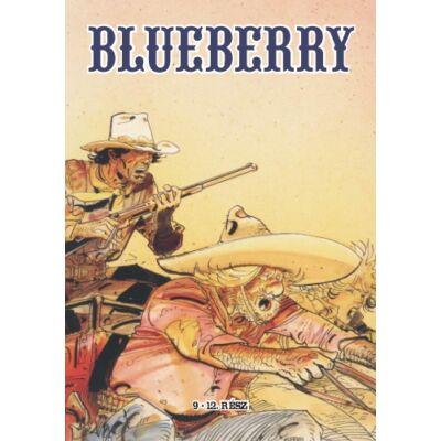 Blueberry gyűjtemény 3. kötet